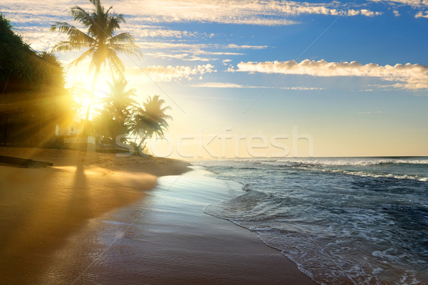 Bright sun and ocean Stock photo © Givaga