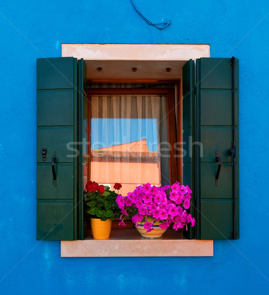 Window with flowers Stock photo © Givaga