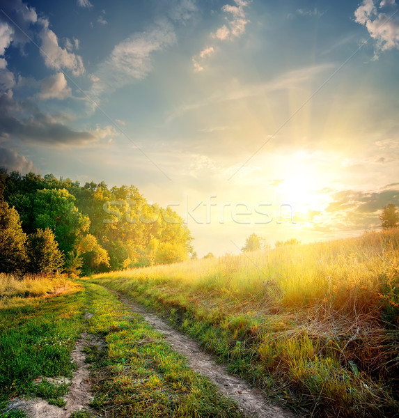 Sunbeams and country road Stock photo © Givaga
