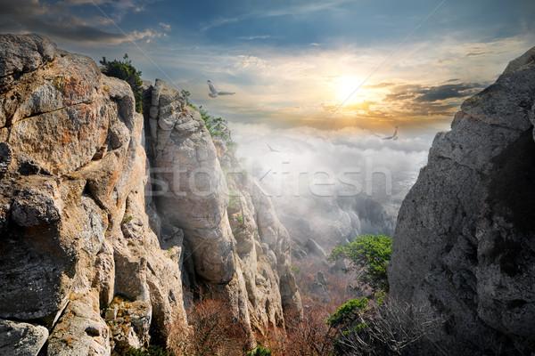 Madarak völgy szellemek köd fa nap Stock fotó © Givaga