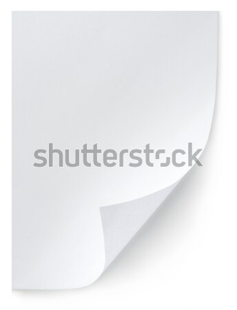 White sheet of paper isolated Stock photo © Givaga