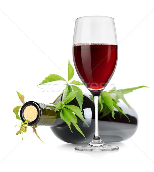 Botella de vino vid aislado blanco vino Foto stock © Givaga