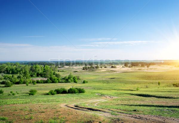 Estrada rural primavera grama sol paisagem fundo Foto stock © Givaga