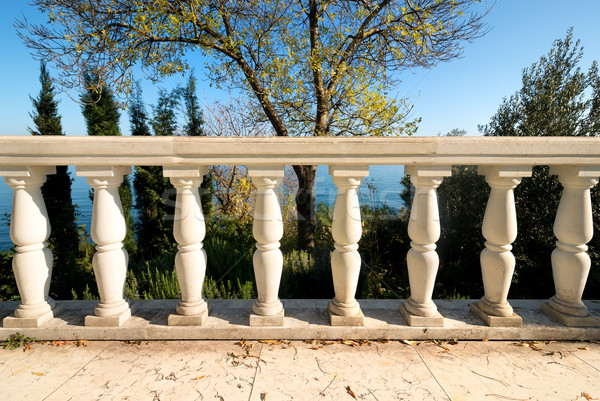 Decorative columns Stock photo © Givaga