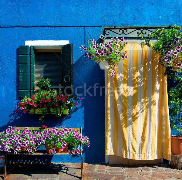 Kék ház sziget Velence Olaszország virágok Stock fotó © Givaga