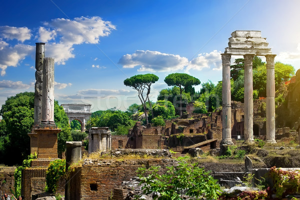 Ruined Roman Forum Stock photo © Givaga