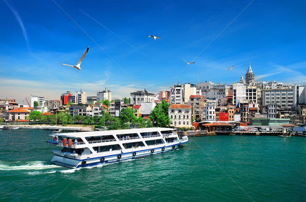Cityscape with Galata Tower Stock photo © Givaga