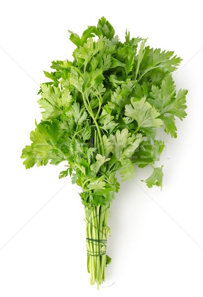 Stock fotó: Petrezselyem · izolált · friss · fehér · étel · zöld