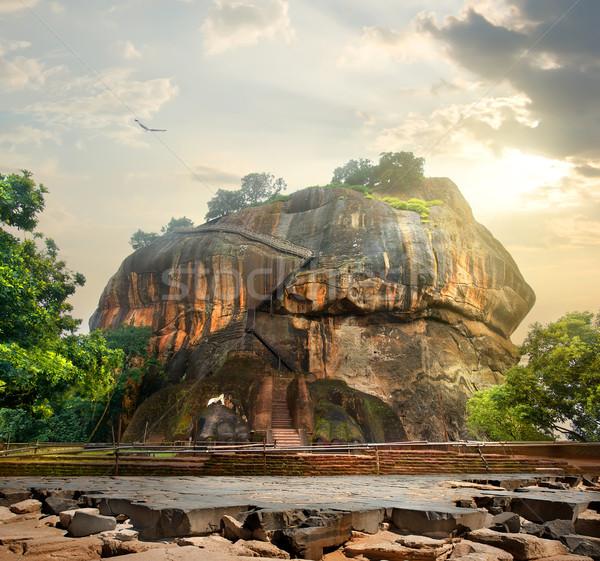 птица горные Шри Ланка дерево облака природы Сток-фото © Givaga
