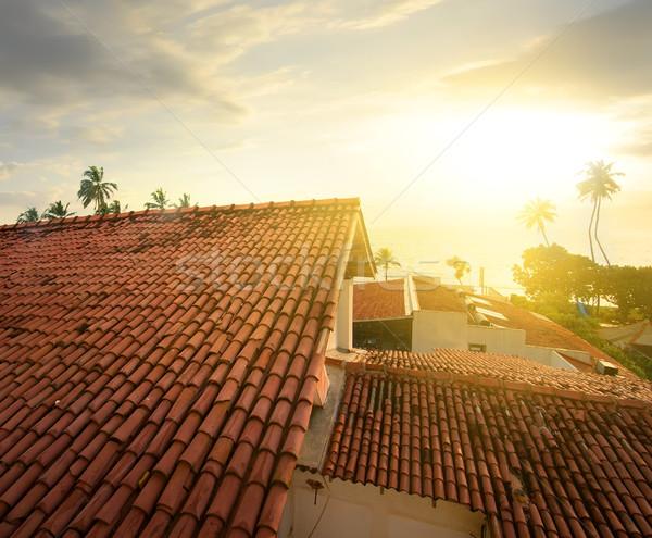 ストックフォト: 表示 · 屋根 · 海 · 日没 · ツリー · 建物
