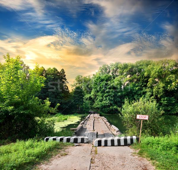 Blockhouse Stock photo © Givaga