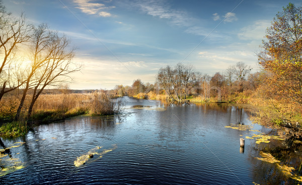 Ondulation automne rivière sunrise herbe soleil Photo stock © Givaga