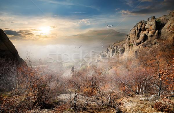Aves outono rochas nascer do sol céu nuvens Foto stock © Givaga