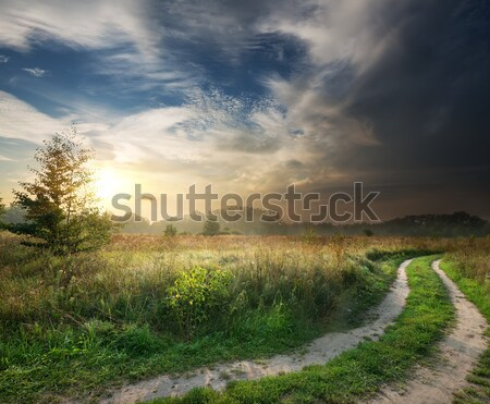 Thunderstorm and country road Stock photo © Givaga
