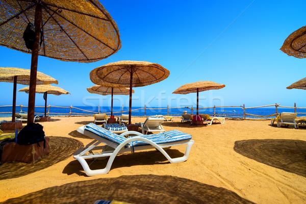 Vacaciones playa mar rojo Egipto cielo naturaleza Foto stock © Givaga