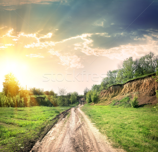 Country road and open land Stock photo © Givaga