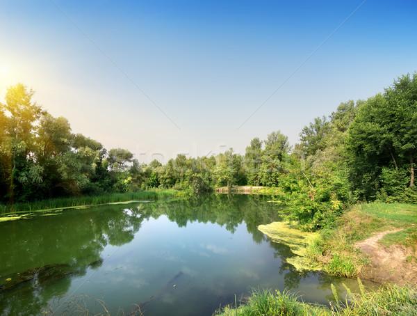 Calm river Stock photo © Givaga