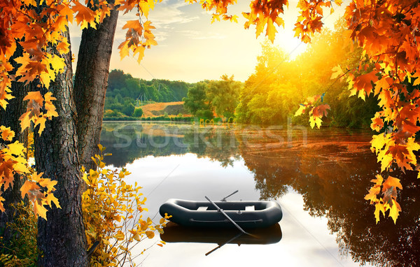 Boat in the pond Stock photo © Givaga