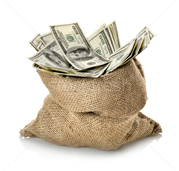 Dollar in the bag Stock photo © Givaga