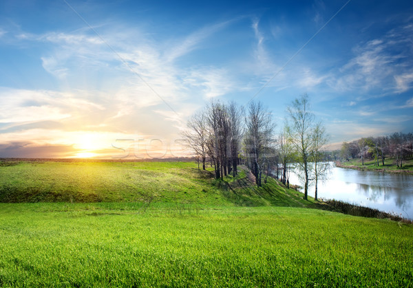 Spring landscape Stock photo © Givaga