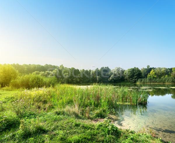 тихий реке рассвета лет небе весны Сток-фото © Givaga