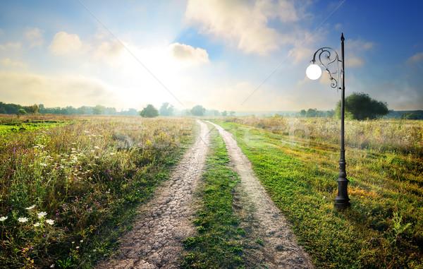 Lámpás vidéki út tavasz reggel égbolt virágok Stock fotó © Givaga