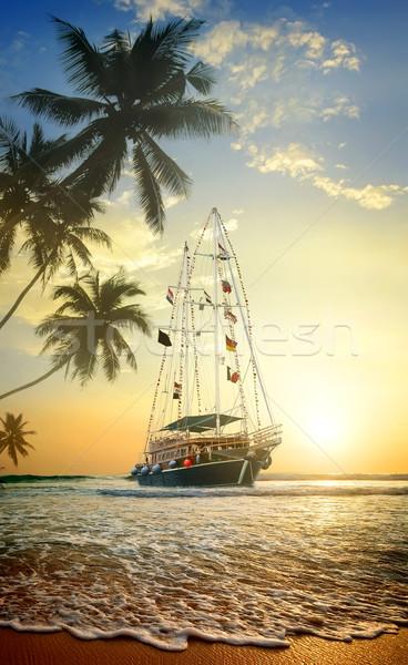 Beautiful ship in ocean Stock photo © Givaga