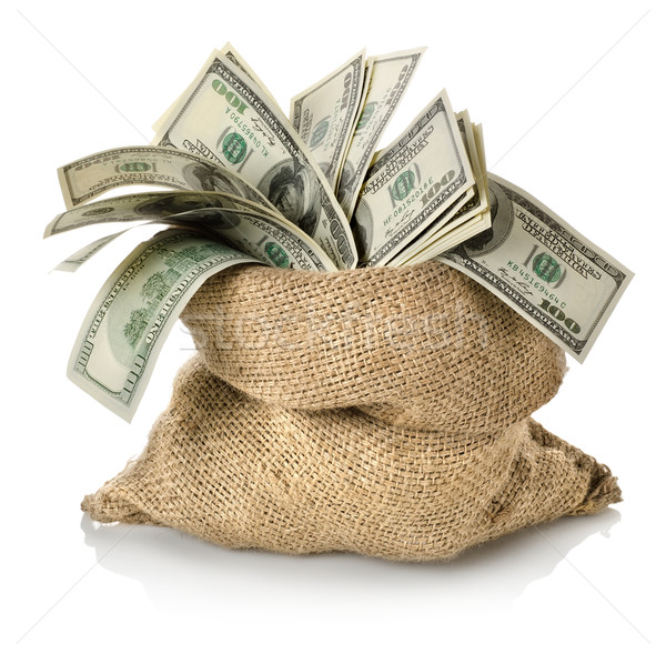 Money in the bag Stock photo © Givaga