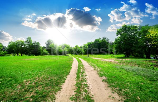 Nap vidéki út fényes erdő égbolt felhők Stock fotó © Givaga
