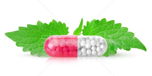 Tabletta menta levelek izolált fehér orvosi Stock fotó © Givaga