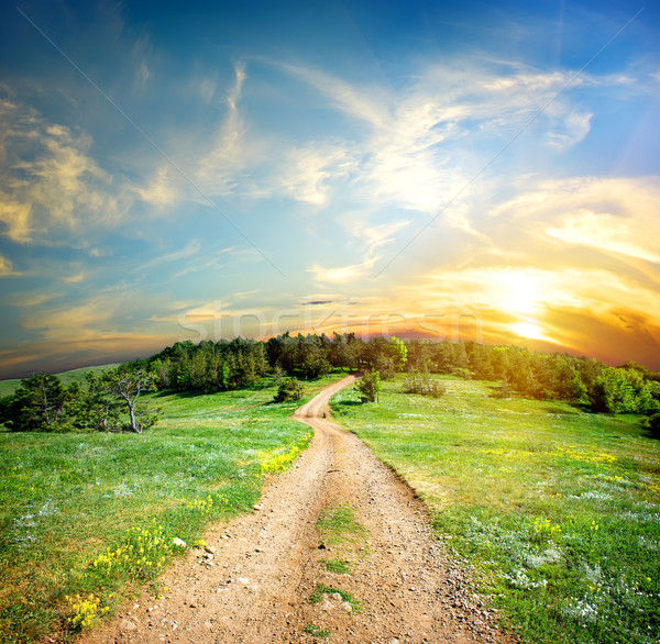 Country road in the mountains Stock photo © Givaga