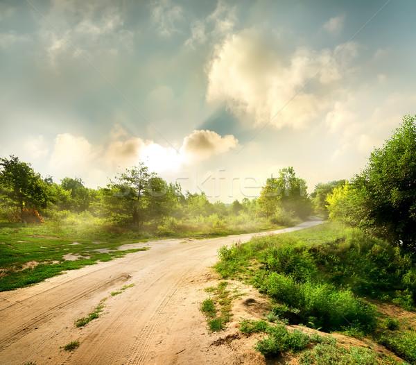 Buğu şafak yol orman bulutlar çim Stok fotoğraf © Givaga