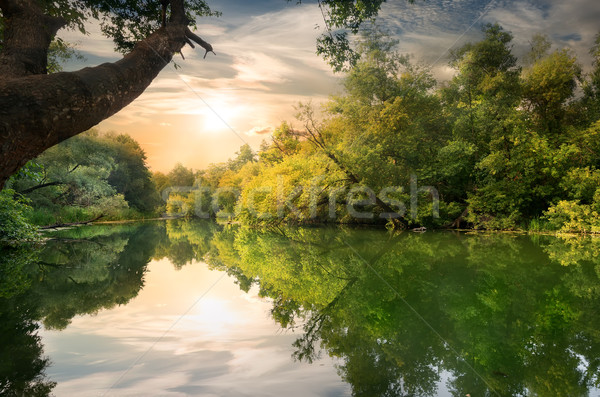 Sunset on the river Stock photo © Givaga