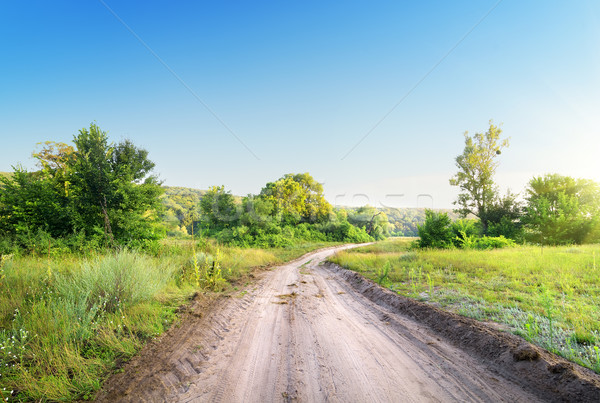 Winding road in a field Stock photo © Givaga