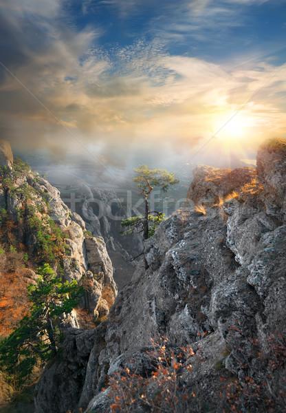 Fog in the mountains Stock photo © Givaga