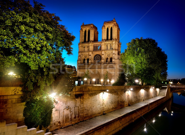 Notre Dame Paris Stock photo © Givaga