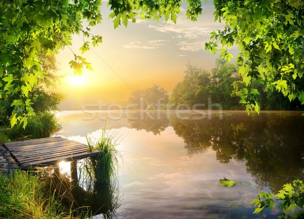 桟橋 川 銀行 早朝 森林 太陽 ストックフォト © Givaga