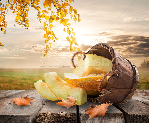 Melon paysage panier table nature nuages Photo stock © Givaga
