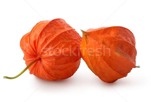 Foto stock: Dois · flores · isolado · branco · comida · natureza