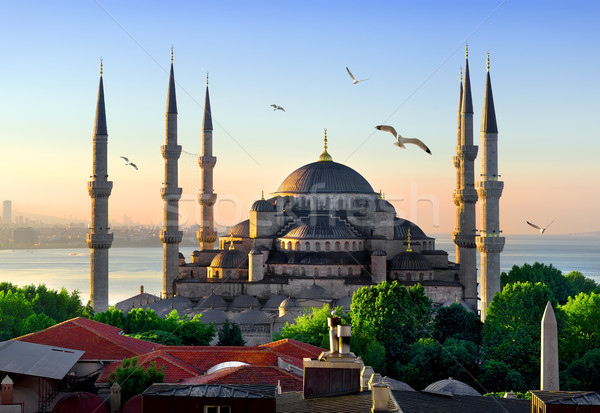 Blue Mosque at sunrise Stock photo © Givaga
