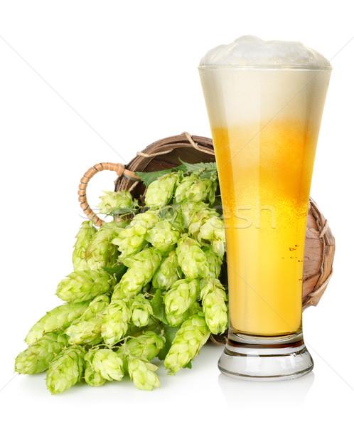хмель корзины изолированный белый пива Сток-фото © Givaga
