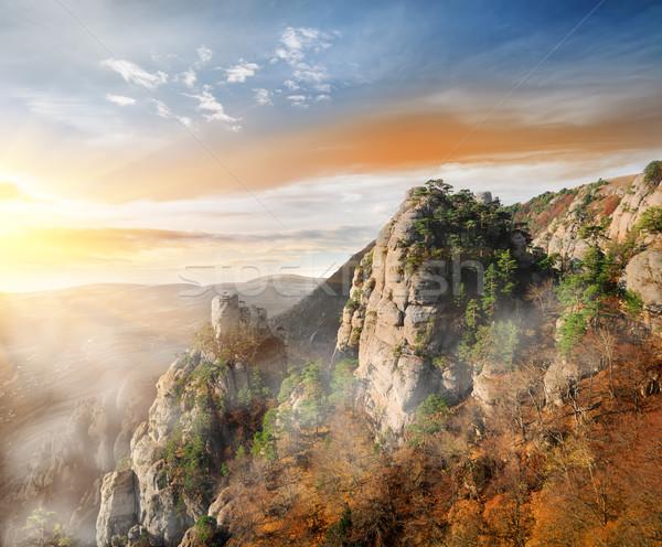 Fog in the mountain canyon Stock photo © Givaga