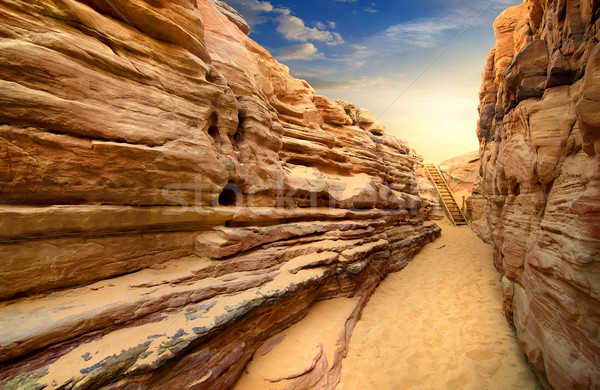 Canyon in Sinai Stock photo © Givaga