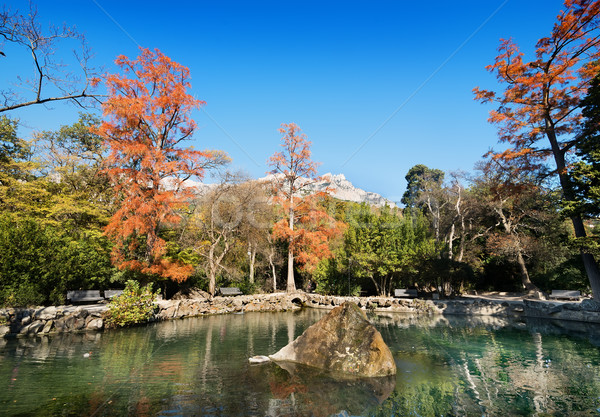 Tó park gyönyörű higgadt ősz víz Stock fotó © Givaga