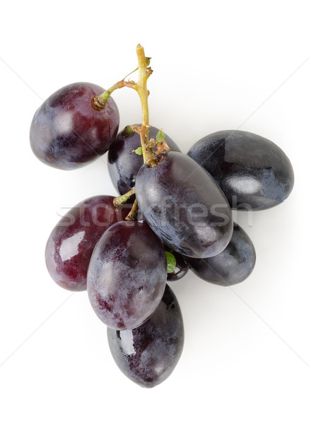темно синий виноград изолированный белый природы Сток-фото © Givaga