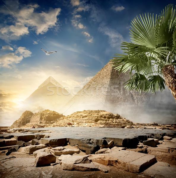 Fog around pyramids Stock photo © Givaga