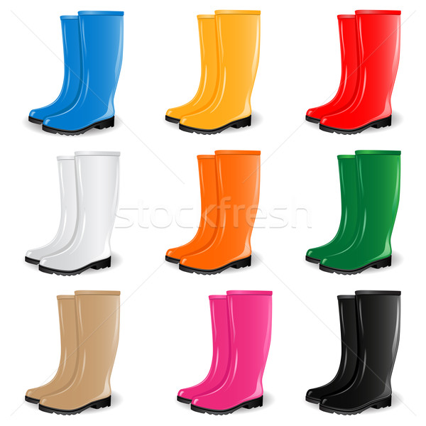 Colored rubber boots vector set Stock photo © gladcov