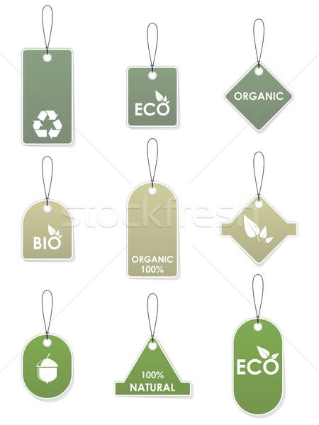 Eco geri dönüşüm ayarlamak yeşil yalıtılmış Stok fotoğraf © gladcov