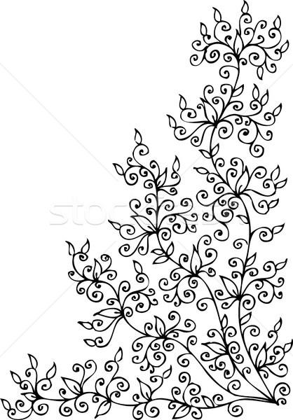 Floral vignette CCCXXV Stock photo © Glasaigh