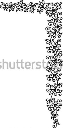 Photo stock: Floral · ornement · décoratif · modèle · texture · cadre